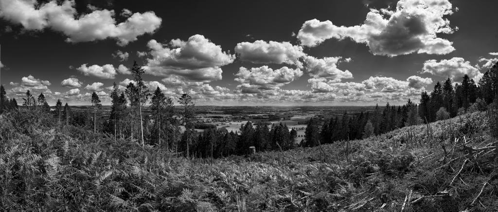 Wiehengebirge Panorama
